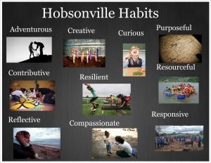 Hobsonville habits