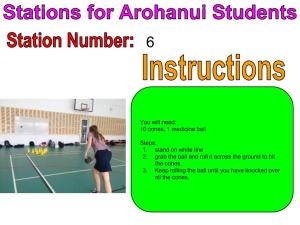 Week 3 Stations For Arohanui Students